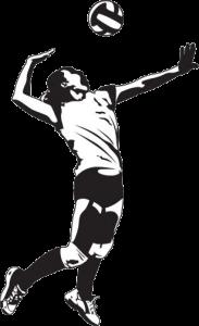 Logo: Siatkówka